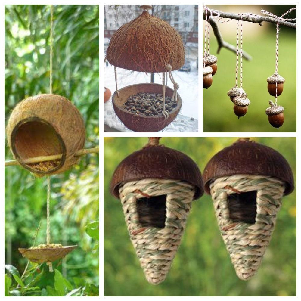 кокосовый орех, материалы для творчества