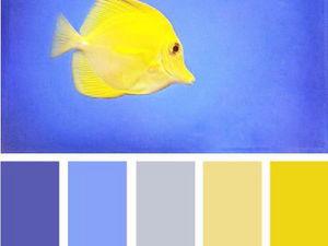 Черпаем вдохновение цветом в мире рыб. Часть 5. Ярмарка Мастеров - ручная работа, handmade.