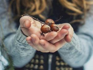 Три орешка для Золушки :). Ярмарка Мастеров - ручная работа, handmade.