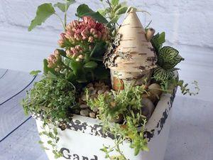 Про маленькие садики. Ярмарка Мастеров - ручная работа, handmade.
