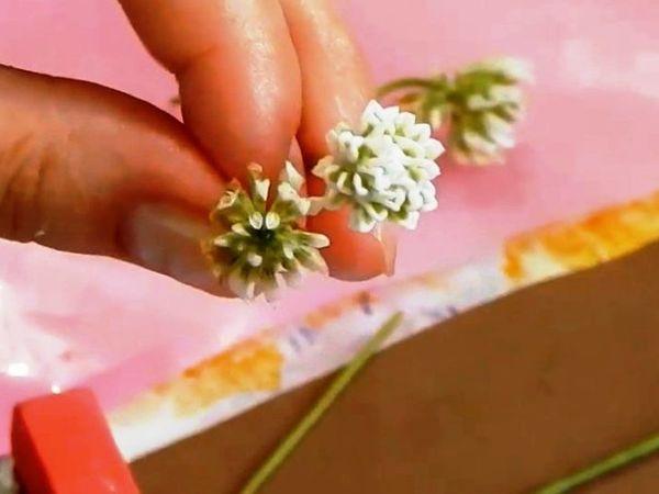 Видео мастер-класс: клевер из холодного фарфора | Ярмарка Мастеров - ручная работа, handmade