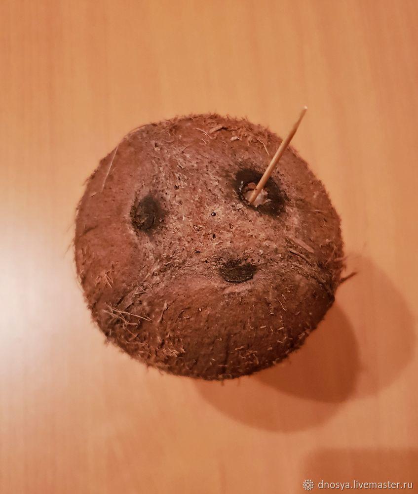 подготовка кокоса для букета