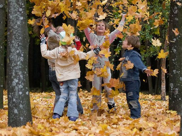Осенние торги в самом разгаре!!!! | Ярмарка Мастеров - ручная работа, handmade