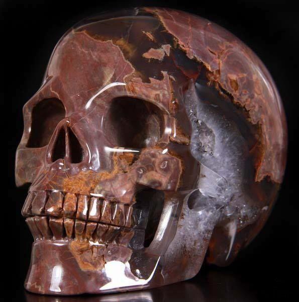 коллекционные черепа