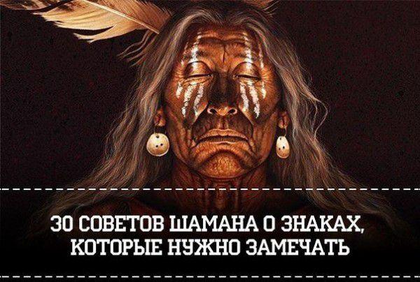 шаман, полезное