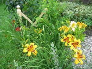 Идеи для сада. Примеры композиций из деревьев и кустарников. Ярмарка Мастеров - ручная работа, handmade.