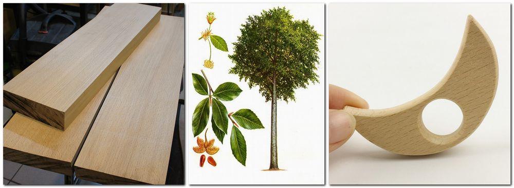 деревья доноры, можжевельник
