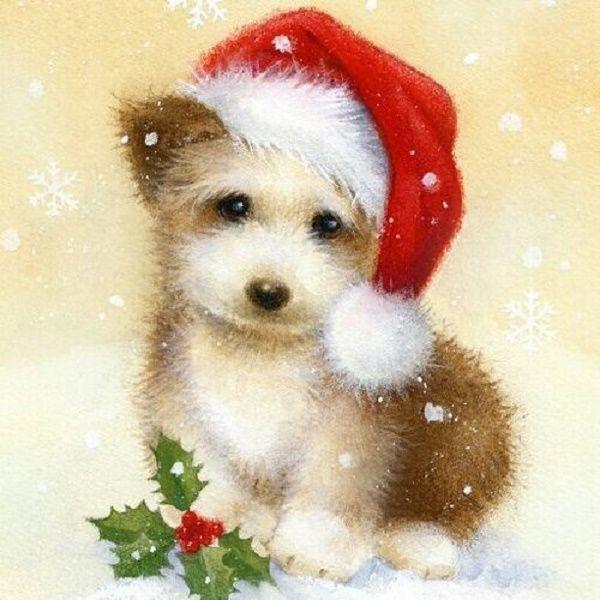 Картинки надписями, новогодние открытки собака