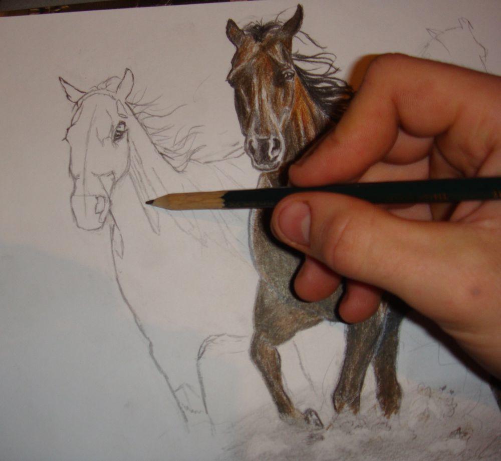 конь, моя работа