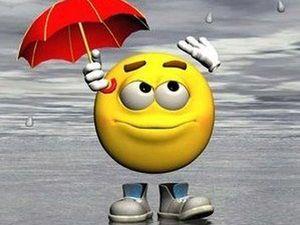 На улице дождь и самое время рассказать где я пропадала целый месяц. Ярмарка Мастеров - ручная работа, handmade.