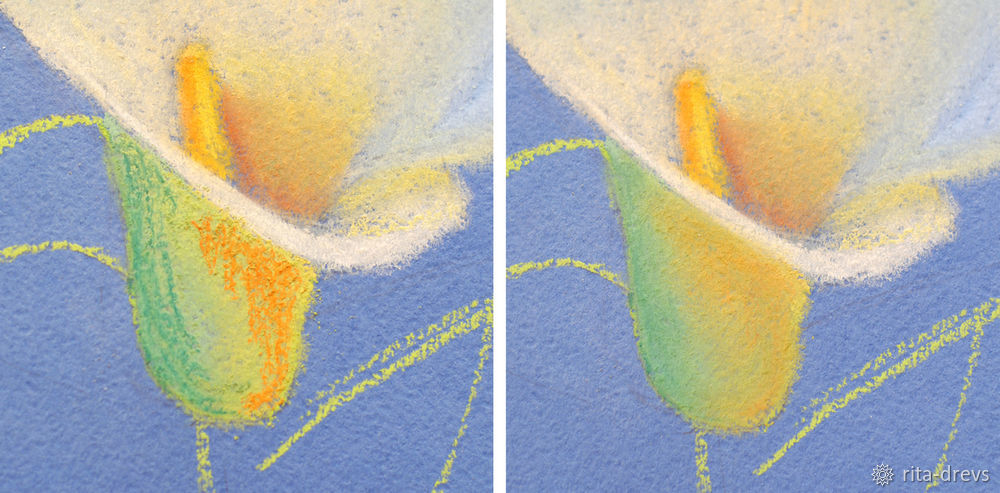 Рисуем пастелью изящный цветок каллы, фото № 9