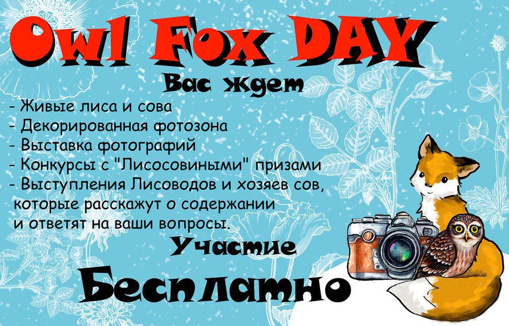 фестиваль, лисы, совы, москва, маркет