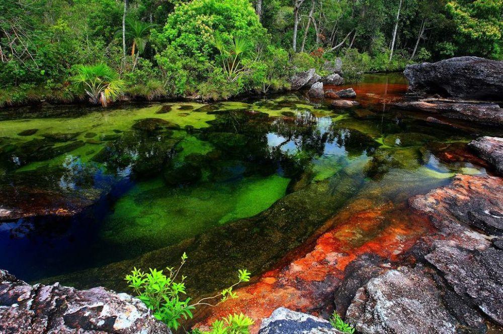 Краски природы: 49 впечатляющих фотографий, фото № 29