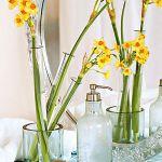 spring-flowers-new-ideas-narcissus3.jpg