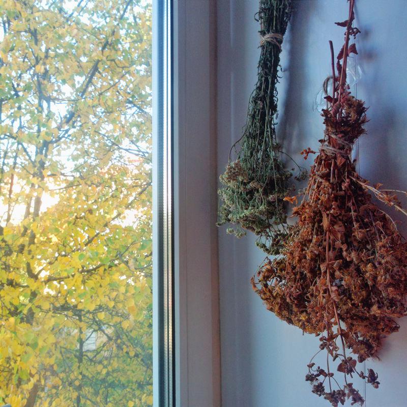 фото, осень, лето, за вдохновением