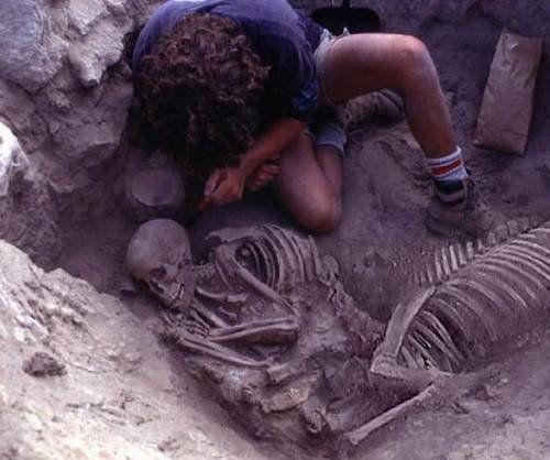 скелет кентавра