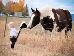 Солнце в детских улыбках: добрые и вдохновляющие фотографии Елены Карнеевой | Ярмарка Мастеров - ручная работа, handmade