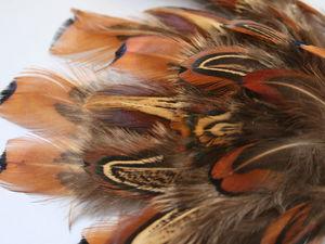 Изменение ассортимента магазина! Распродажа перьев птиц! | Ярмарка Мастеров - ручная работа, handmade