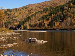Горы и реки осенью: для души. Ярмарка Мастеров - ручная работа, handmade.