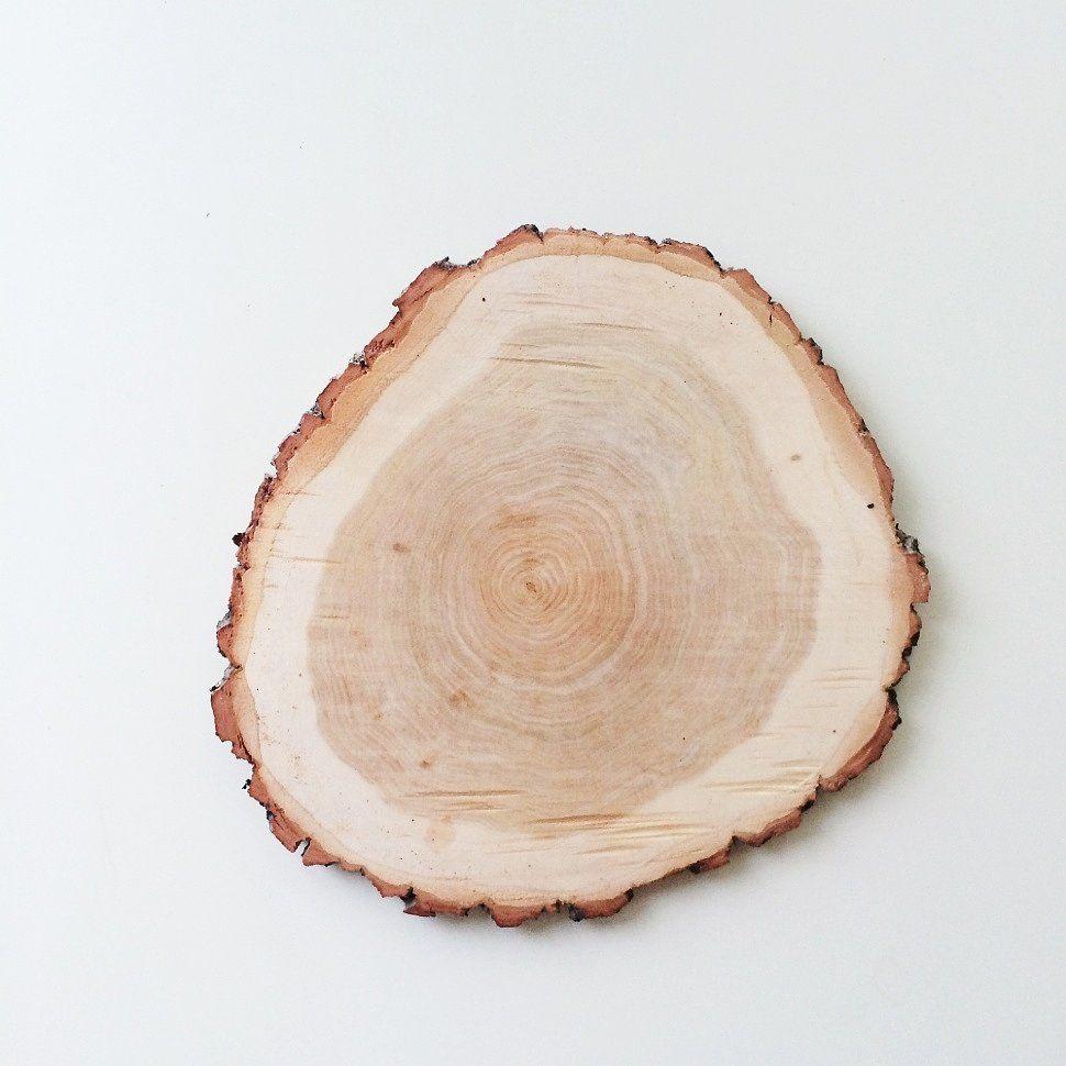 бумажный фон спил дерева в картинках позже выяснилось