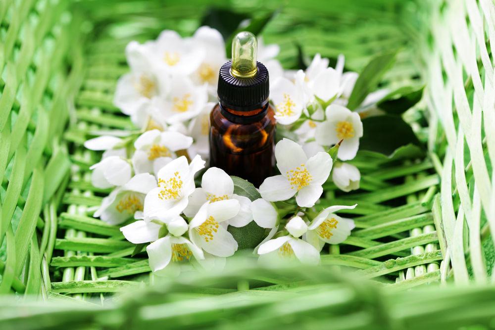 эфирное масло, жасмин, масло жасмина, красота, здоровье, косметика, мыло опт, девушкам, женщинам, советы, косметология, ингредиенты