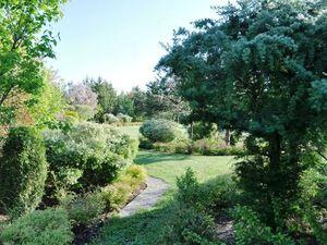 Почему сад так важен для нас. Знакомство. Ярмарка Мастеров - ручная работа, handmade.