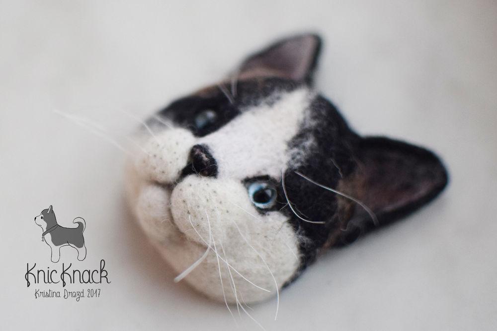 кошка, портрет
