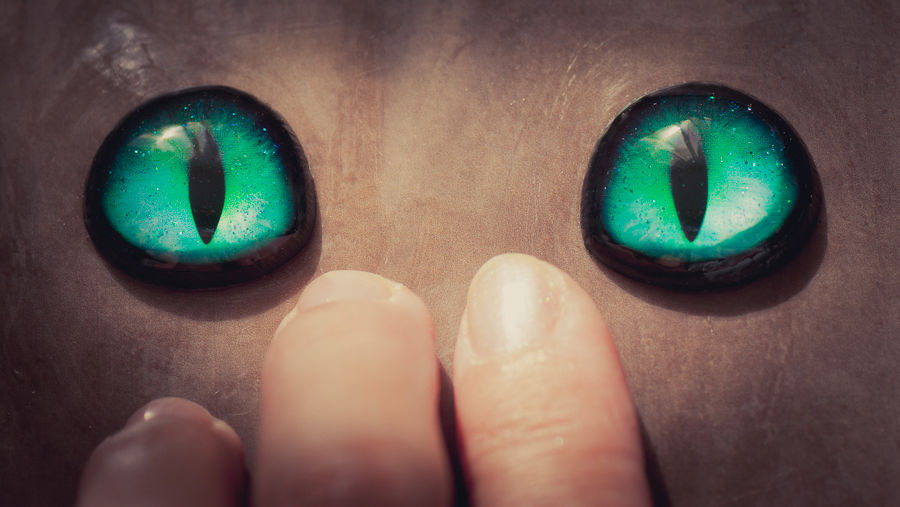 глаза коту