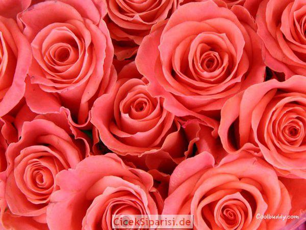 мех в цвете Коралл и Оранж делает чудеса!   Ярмарка Мастеров - ручная работа, handmade