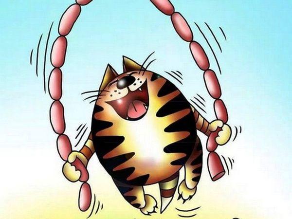 Без кота и жизнь не та | Ярмарка Мастеров - ручная работа, handmade