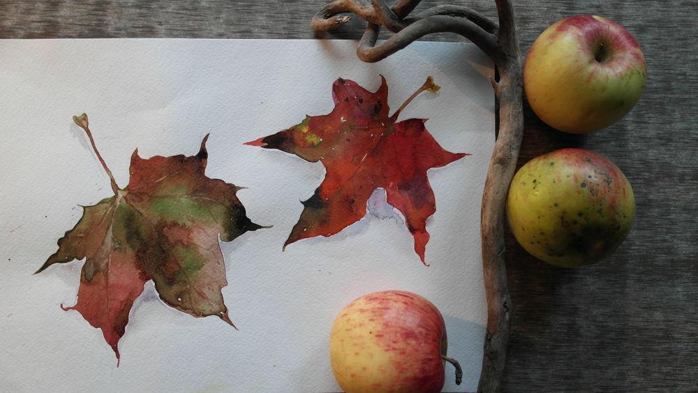 акварель, осенние листья, акварельная живопись