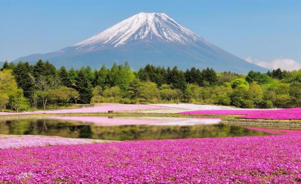 Краски природы: 49 впечатляющих фотографий, фото № 24