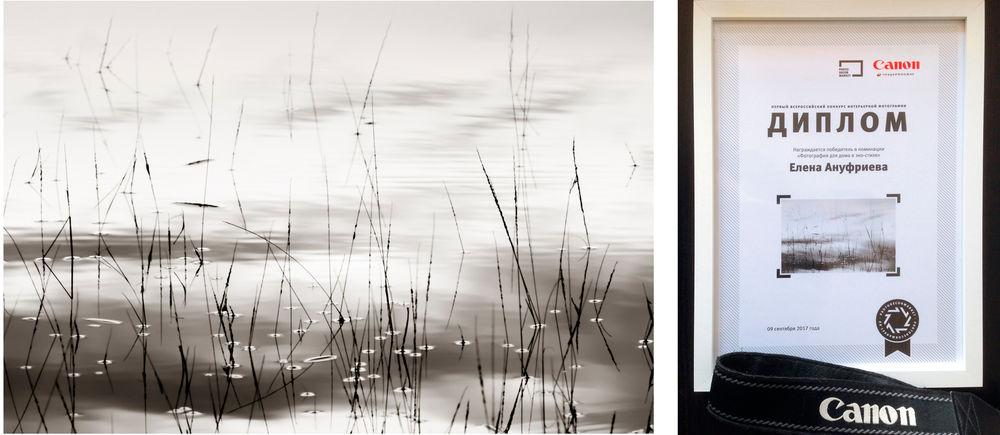 фотография, фотография для интерьера, фотокартина для интерьера, фотокартины, черно-белая фотография, природа картины, авторская фурнитура, авторская фотокартина, победитель конкурса