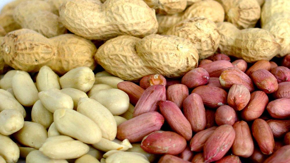 Жареный арахис, табак, кожа, дерево. Прекрасная осень., фото № 1