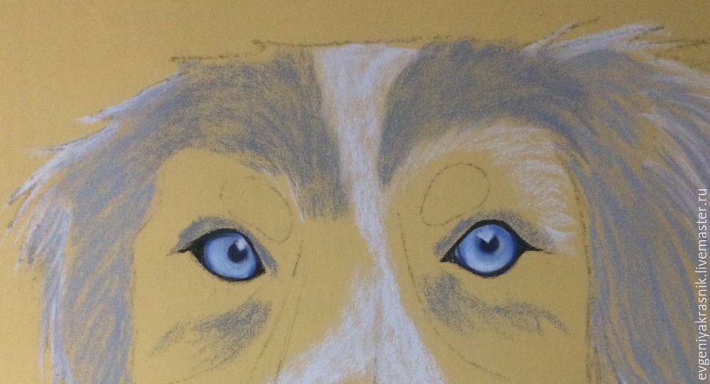 портрет собаки пастелью