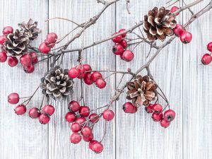Доступные новогодние украшения из шишек: 20 простых идей. Ярмарка Мастеров - ручная работа, handmade.