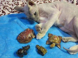 Распродажа фигурок из Камня. Ярмарка Мастеров - ручная работа, handmade.