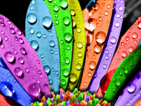 Роспись зонта. Рабочий процесс. | Ярмарка Мастеров - ручная работа, handmade