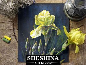 Видеоурок: рисуем желтый ирис сухой пастелью. Ярмарка Мастеров - ручная работа, handmade.
