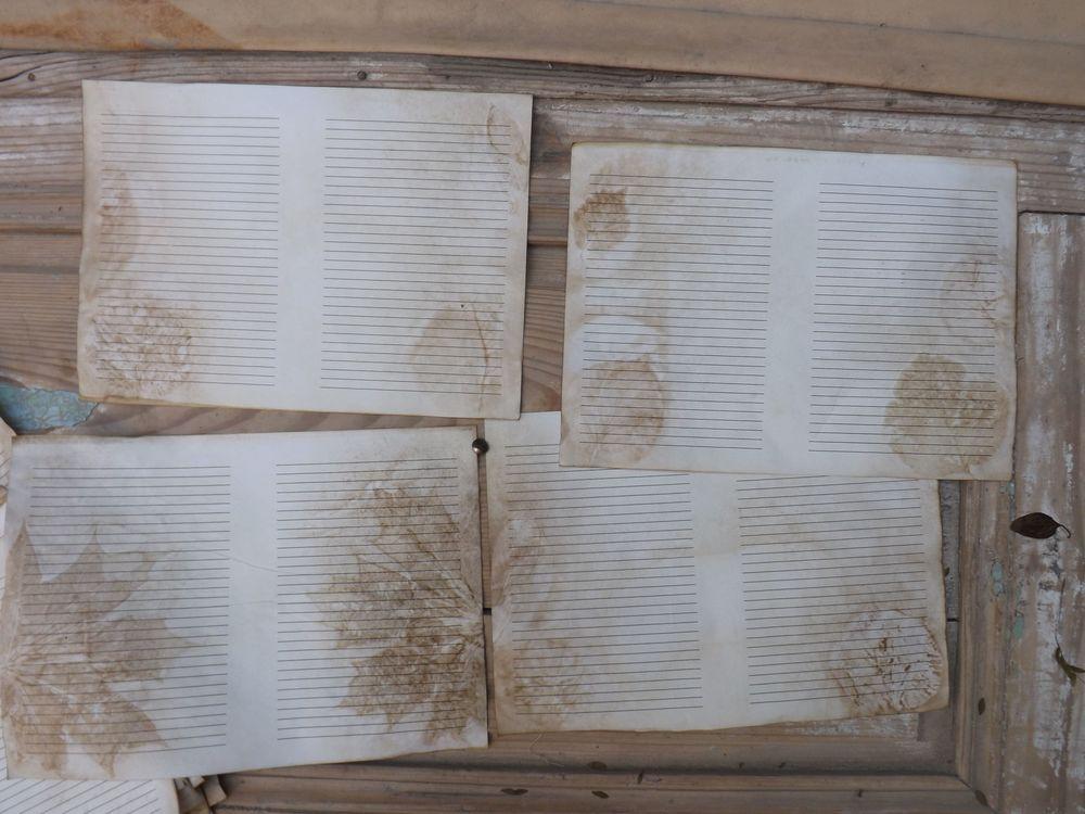 бумага с экопринтом