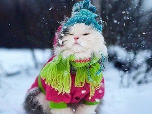 Наконец-то выпал снег!. Ярмарка Мастеров - ручная работа, handmade.