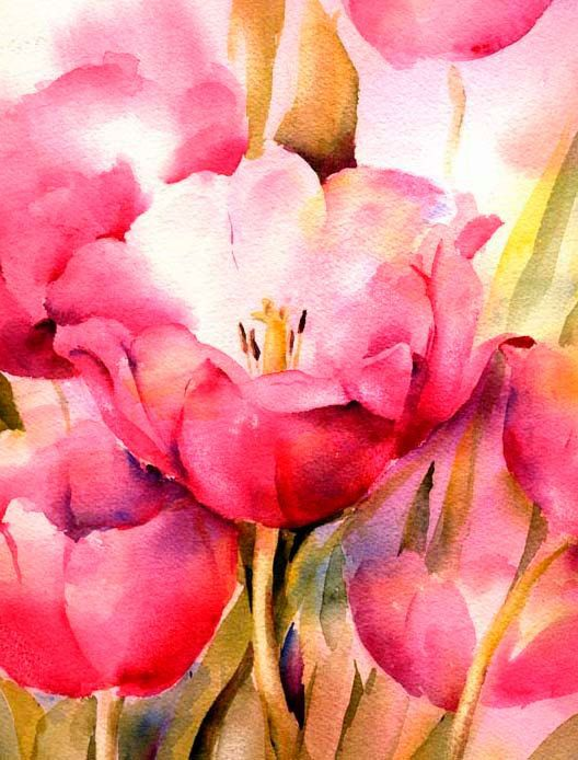 Pink Tulip Watercolor Print  Fine Art Giclee by ConnieTownsArt, $35.00