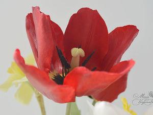 Тюльпаны и нарциссы их холодного фарфора. Ярмарка Мастеров - ручная работа, handmade.