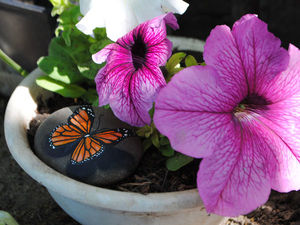 Роспись камня «Живая бабочка». Ярмарка Мастеров - ручная работа, handmade.