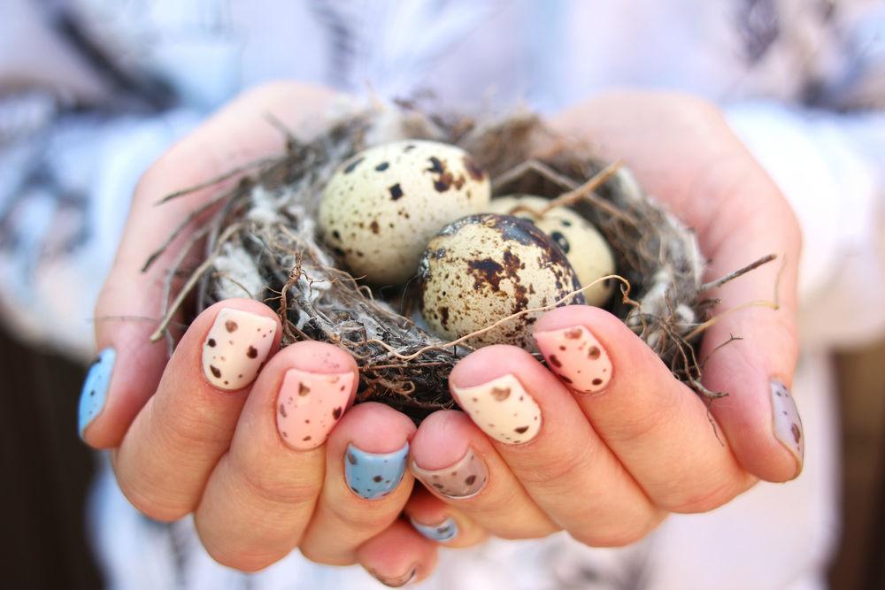 мишки тедди, коллекция, пасхальные яйца