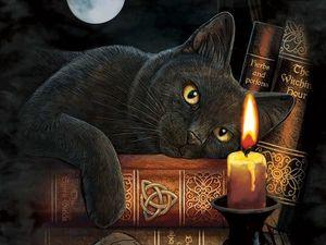 10 Магических Тайн, Которые Хранит Ваша Кошка  Кошки издавна считаются загадочными и магическими животными. Зная об их способностях, вы по-новому взгл. Ярмарка Мастеров - ручная работа, handmade.