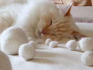 Украшения из шерсти кота. Ярмарка Мастеров - ручная работа, handmade.