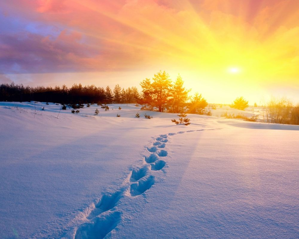 солнцестояние, зимнее солнцестояние, день силы
