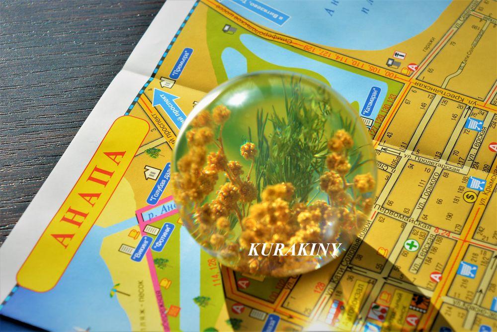 шар с растениями, сферы с цветами