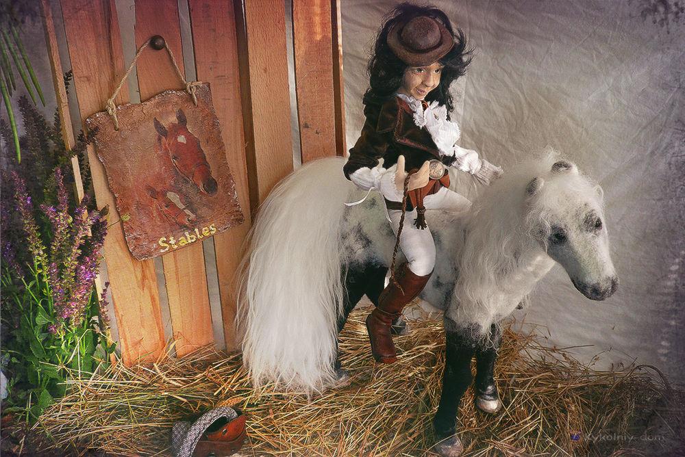 конь изшерсти